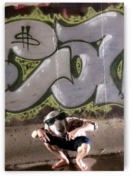 Graffiti Dawg by G Bochsler