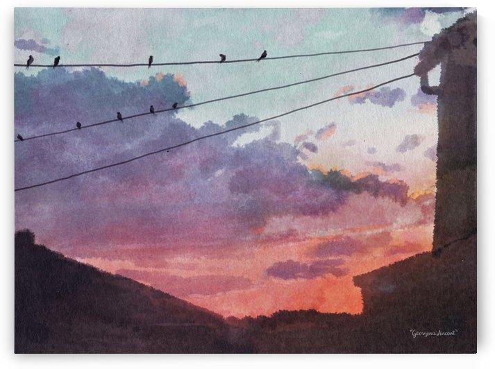 Birds at sunset by Georgina Vincent