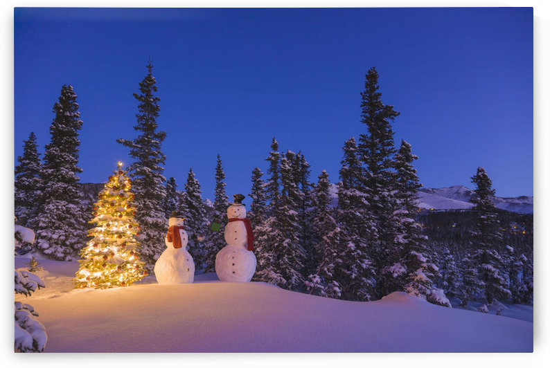 Two Snowmen Exchanging Gifts Standing Next To A Christmas Tree In Front Of A Snowcovered Spruce Forest At Twilight;Anchorage Alaska Usa by PacificStock