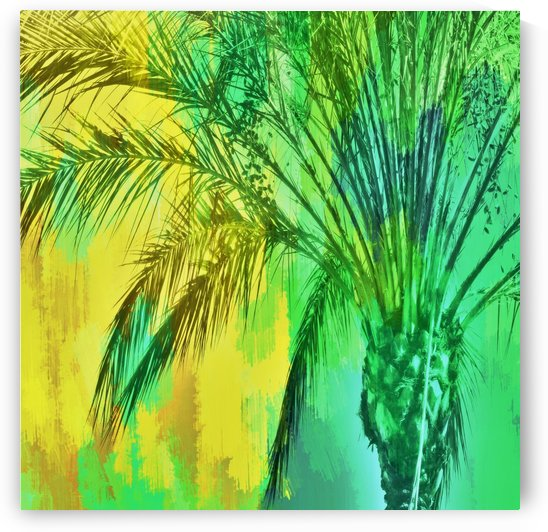 palm tree with green and yellow painting texture abstract background by TimmyLA
