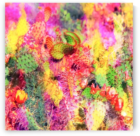 green cactus with flower in the desert with colorful painting abstract background  by TimmyLA
