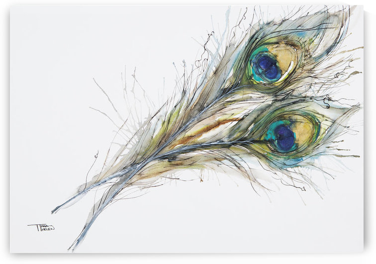 Watercolor Painting Of Two Peacock Feathers. by PacificStock