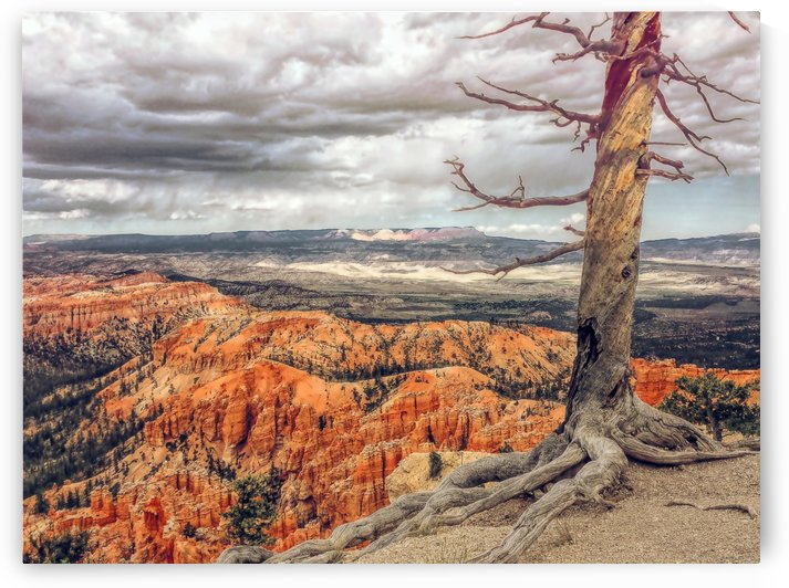 Bryce Canyon by Greene Safaris Productions