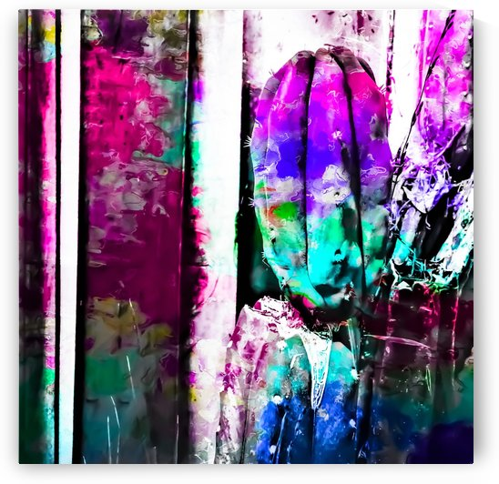 cactus with wood background in painting texture abstract in pink purple green blue by TimmyLA