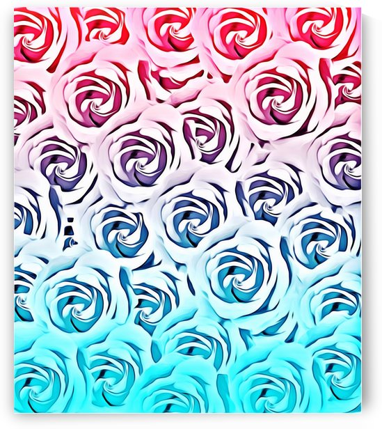 blooming rose pattern texture abstract background in pink and blue by TimmyLA