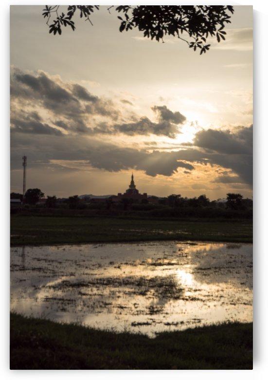 rice field in Sukhothai in thailand in sunset by Babett-s Bildergalerie