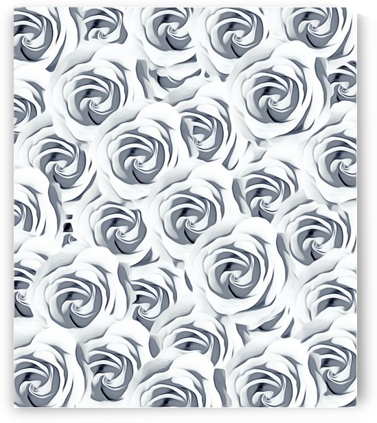 rose pattern texture abstract background in black and white by TimmyLA