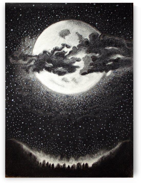 Moonlight Enchantment  by Savannah Marla Lima