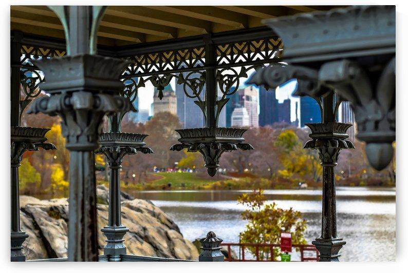 Inside Gazebo Central Park  by vincenzo