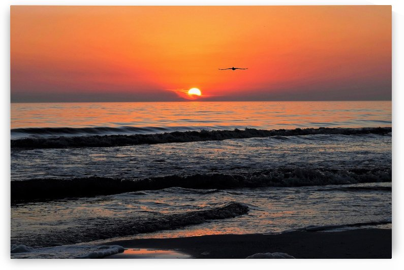 Siesta Key Sunset by vincenzo