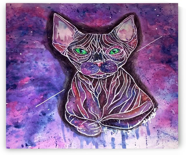 Purrfect Stars by Makayla Ellis