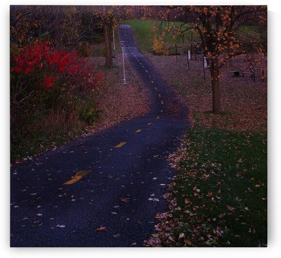 park Road by Quinton Smith