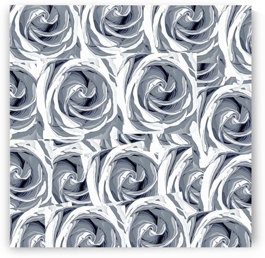 closeup white rose texture pattern abstract background by TimmyLA