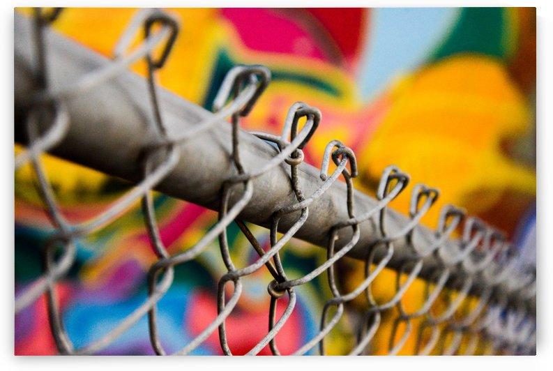 Chain Link by Alek MacRae