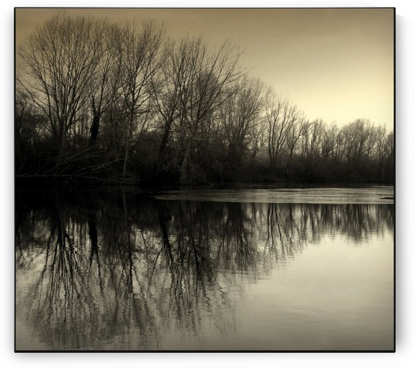 Winter Symmetry by Kate Towers