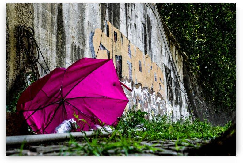 Rain Shield by Alek MacRae