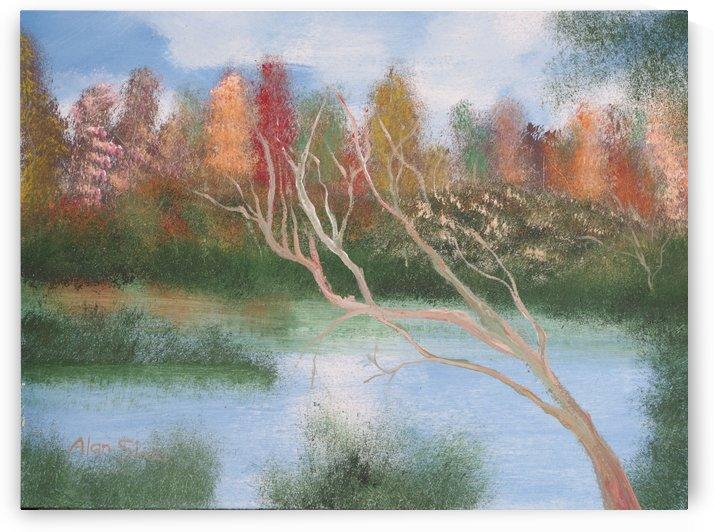 Autumn colors. by Alan Skau