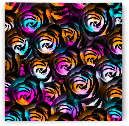 black rose texture abstract with painting abstract in orange pink blue by TimmyLA