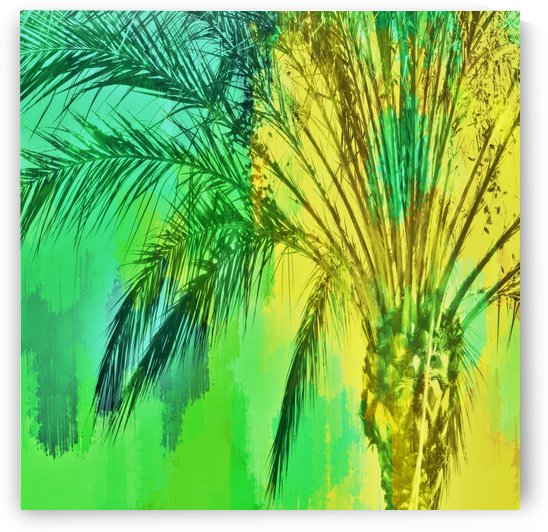 isolate palm tree with painting abstract background in green yellow by TimmyLA