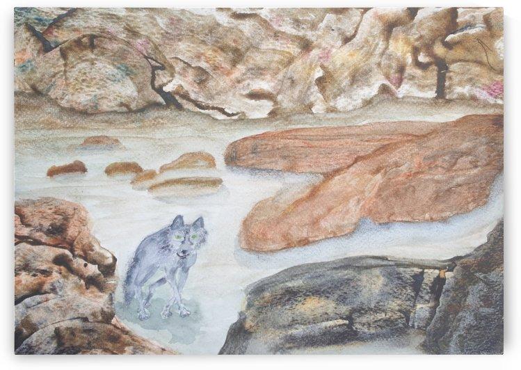 Wolf meandering through the rocks. by Alan Skau