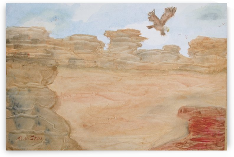 Eagle over the desert. by Alan Skau