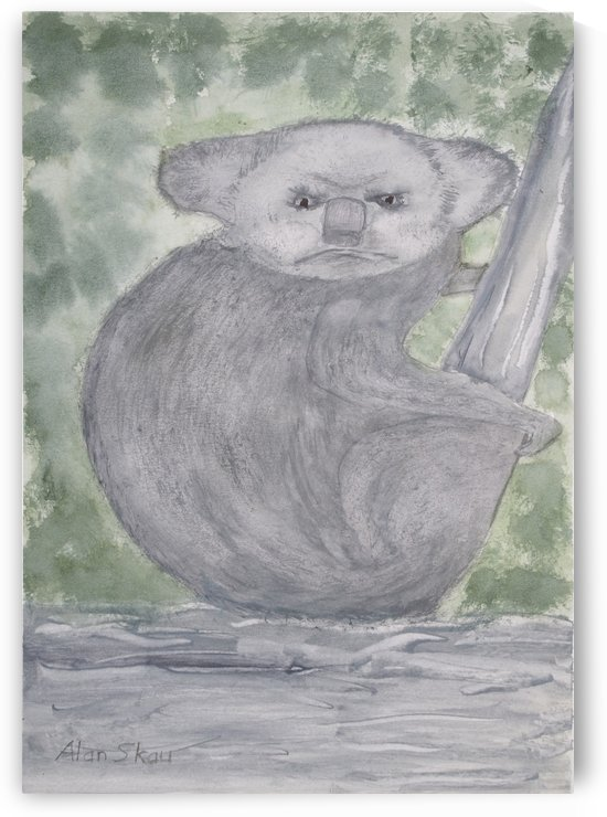 Angry Koala. by Alan Skau