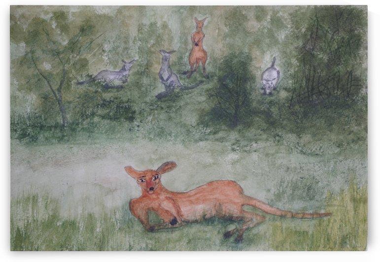 Kangaroos. by Alan Skau