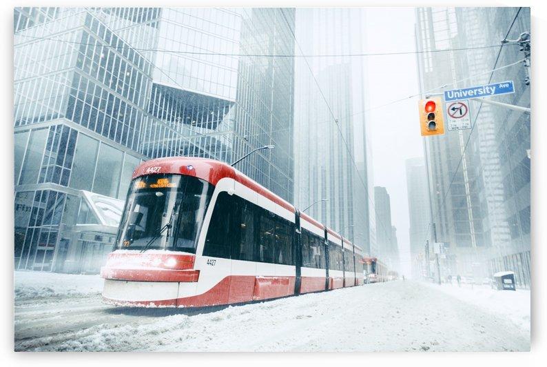 Amazing Toronto  by Marko Radovanovic