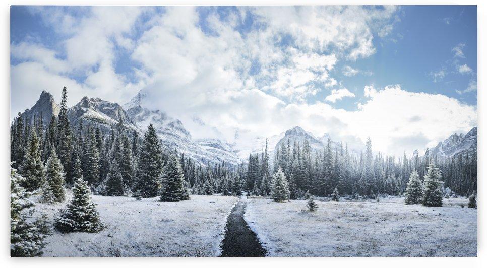 Mountain World by Marko Radovanovic