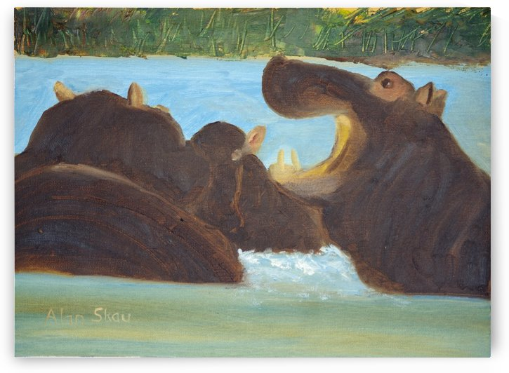 Hippos in the river. by Alan Skau