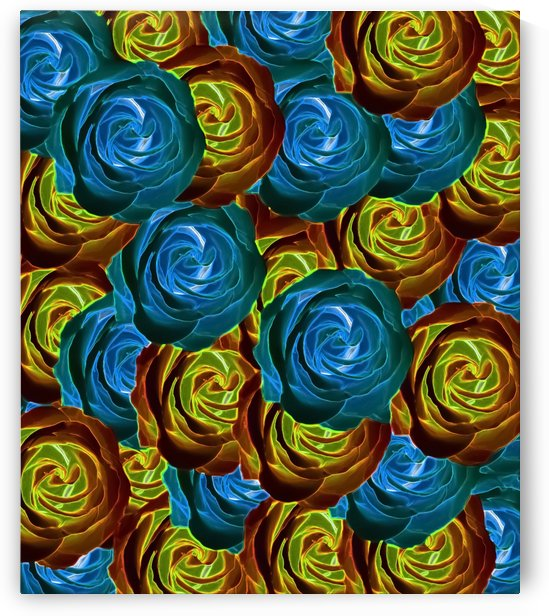 closeup rose pattern texture abstract in blue red and yellow by TimmyLA