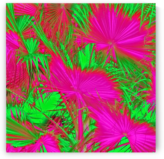 closeup palm leaf texture abstract background in pink and green by TimmyLA