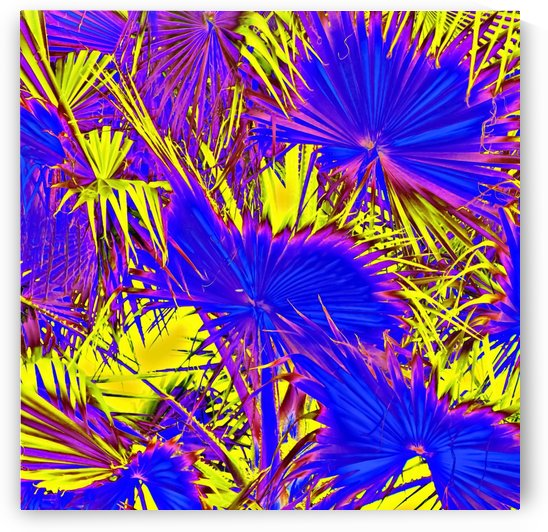 closeup palm leaf texture abstract background in blue pink and yellow by TimmyLA