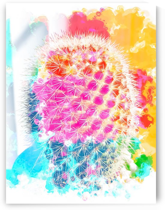 closeup cactus with colorful painting abstract in pink orange blue by TimmyLA