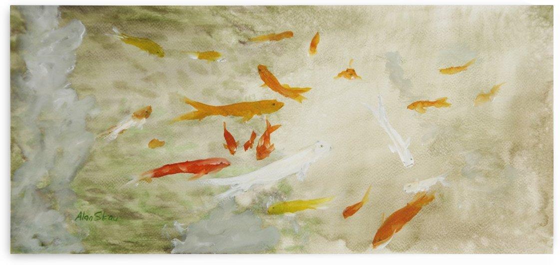 Ornamental Fish. by Alan Skau