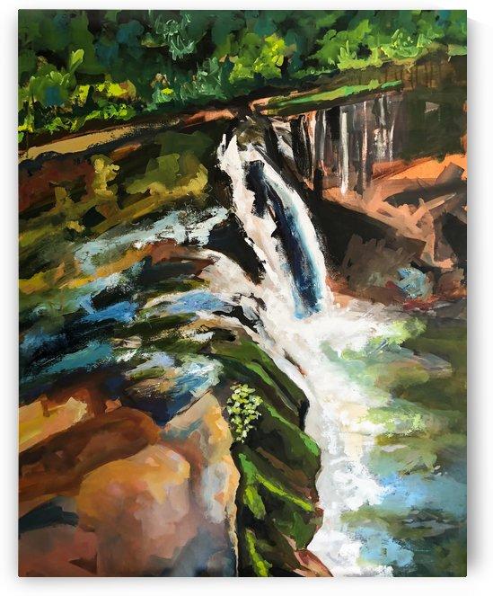 Waterfall by Hal Sadler