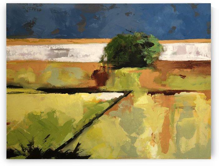 Fields_Final by Hal Sadler
