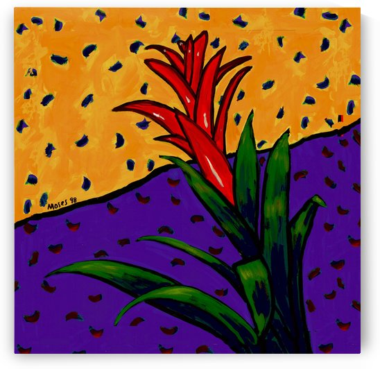 BROMELIAD by Moses