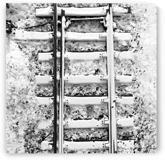 Tracks by Marcin Lukaszewicz
