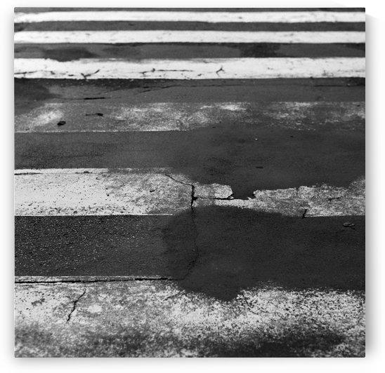 Crossing by Marcin Lukaszewicz