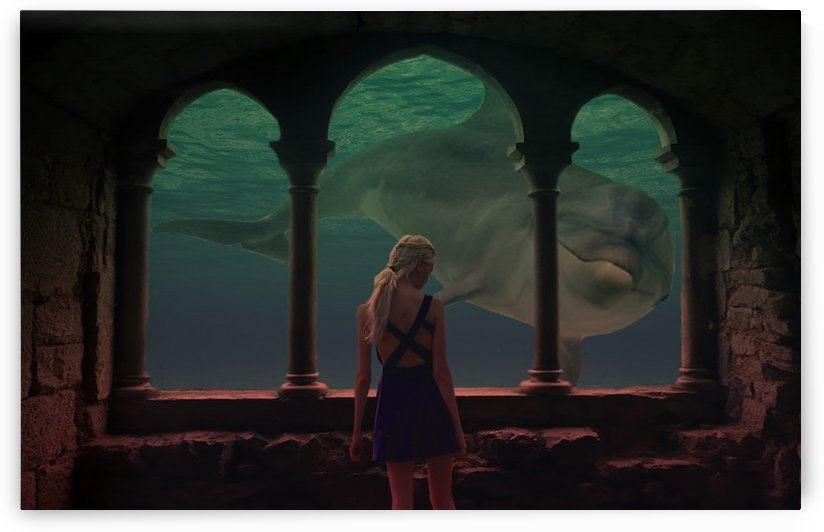 Dolphin... by ilkgül çaylak