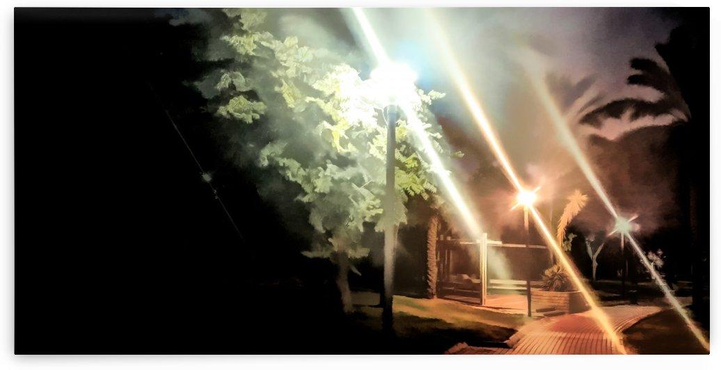 City Park at night 1 by raanan ben ari