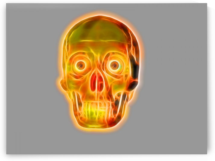 Red and yellow colors skull illustration   PC117212 by CiddiBiri