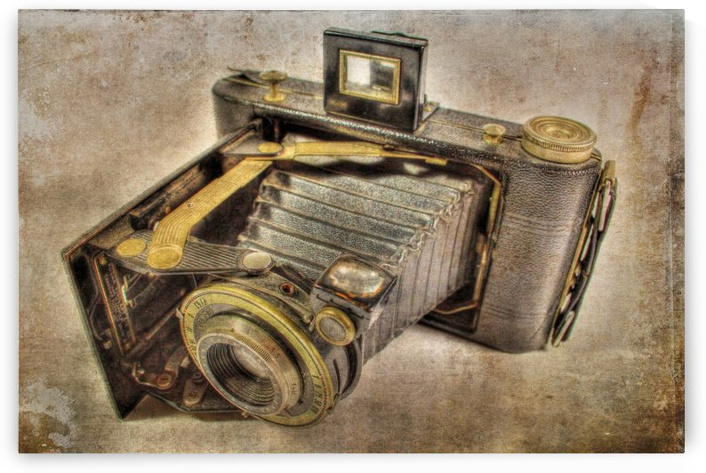 Vintage camera by dbriyul