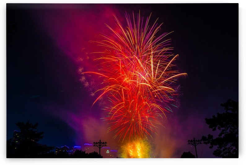 FIREWORKS by OPTIC CANVAS