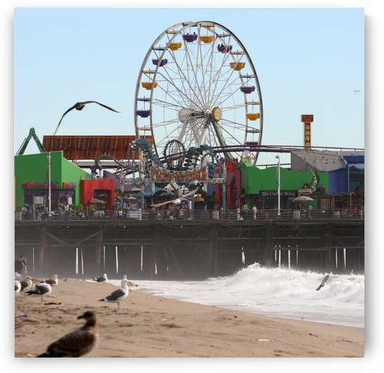 Sea Gulls & Santa Monica Pier by Hold Still Photography
