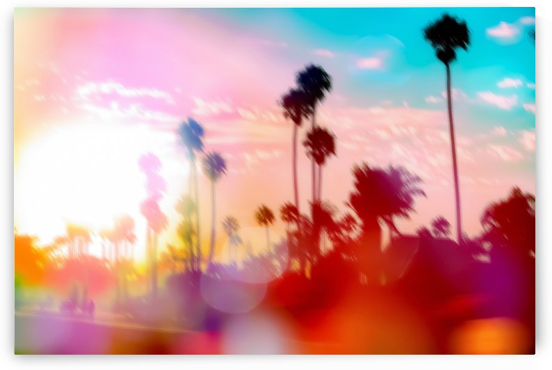 palm tree with sunset sky and light bokeh abstract background by TimmyLA