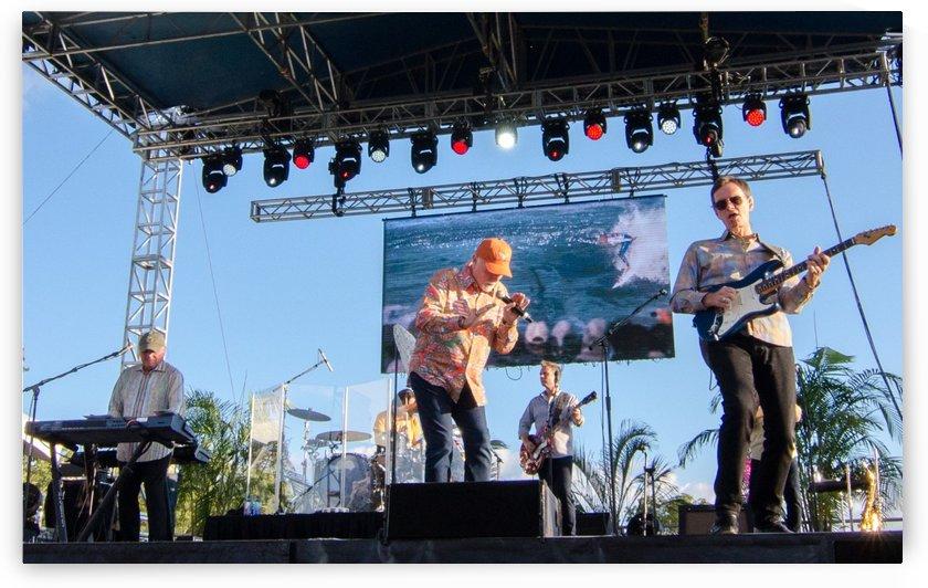 The Beach Boys - Band (Biltmore Estate, Asheville NC, 7/30/17) by jrbPHOTOGRAPHY