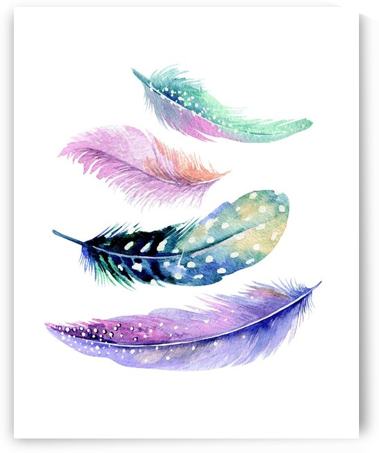 feather by Stock Photography
