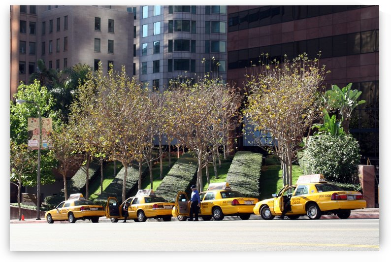 Four Taxis Four Trees by Ken Wood